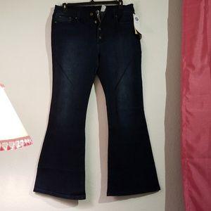 DG2 Flare Jeans Lyric Culture